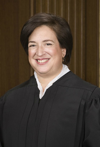 credit: https://commons.wikimedia.org/wiki/File:Elena_Kagan_official_SCOTUS_portrait.jpg